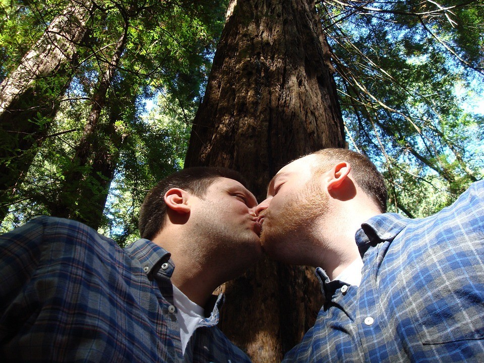 gay-marriage-1571621_960_720.jpg