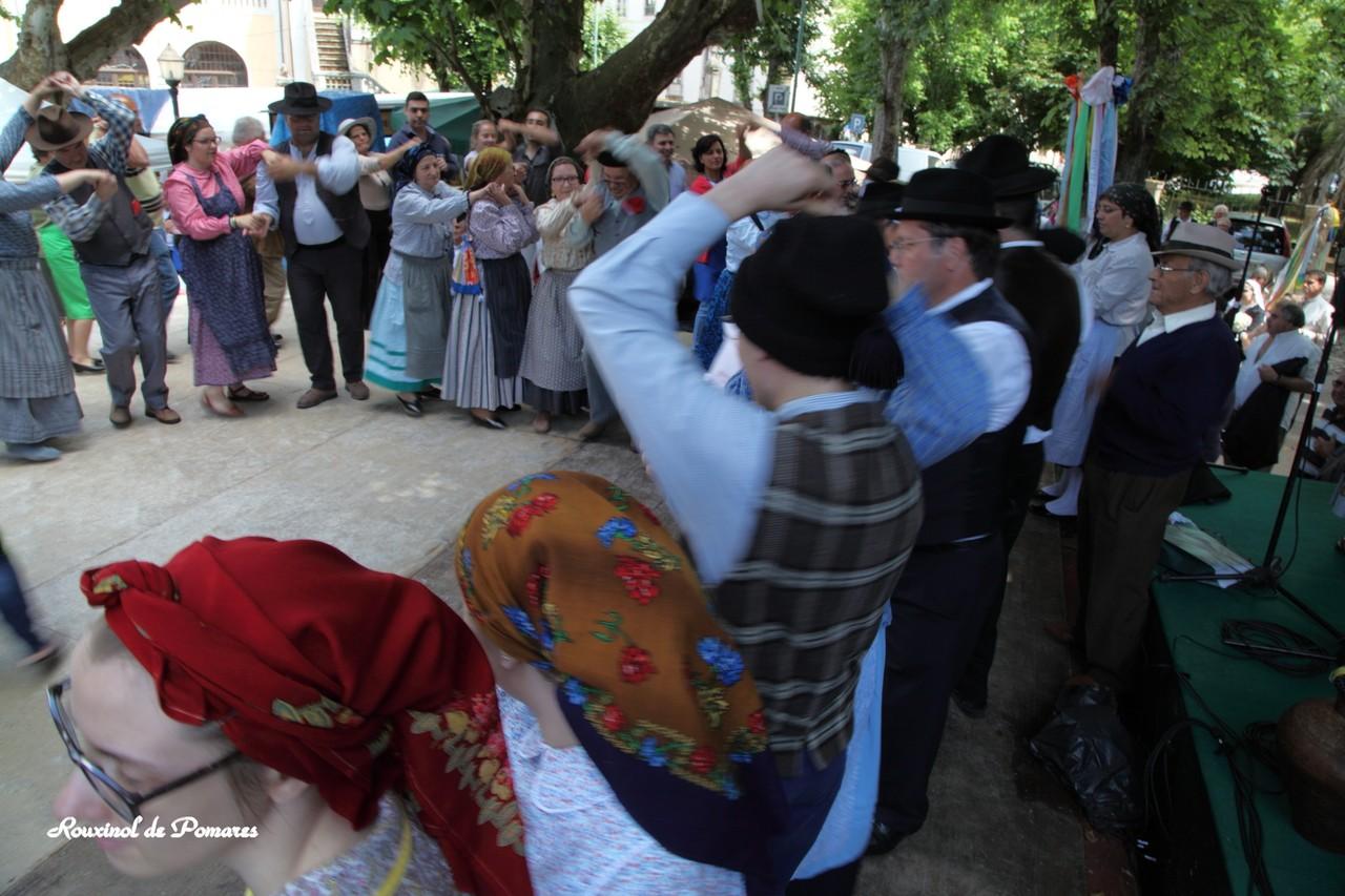 Pela Feira das Freguesias Arganil 2015 III (31)