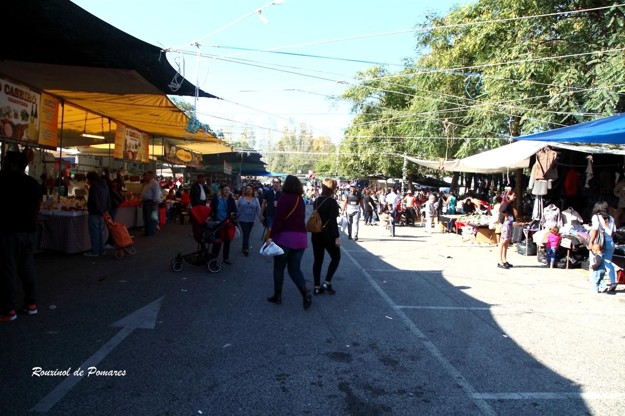 aqui também há feiras (006)