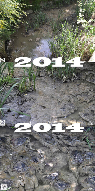 Esgotos Ano de 2014.jpg