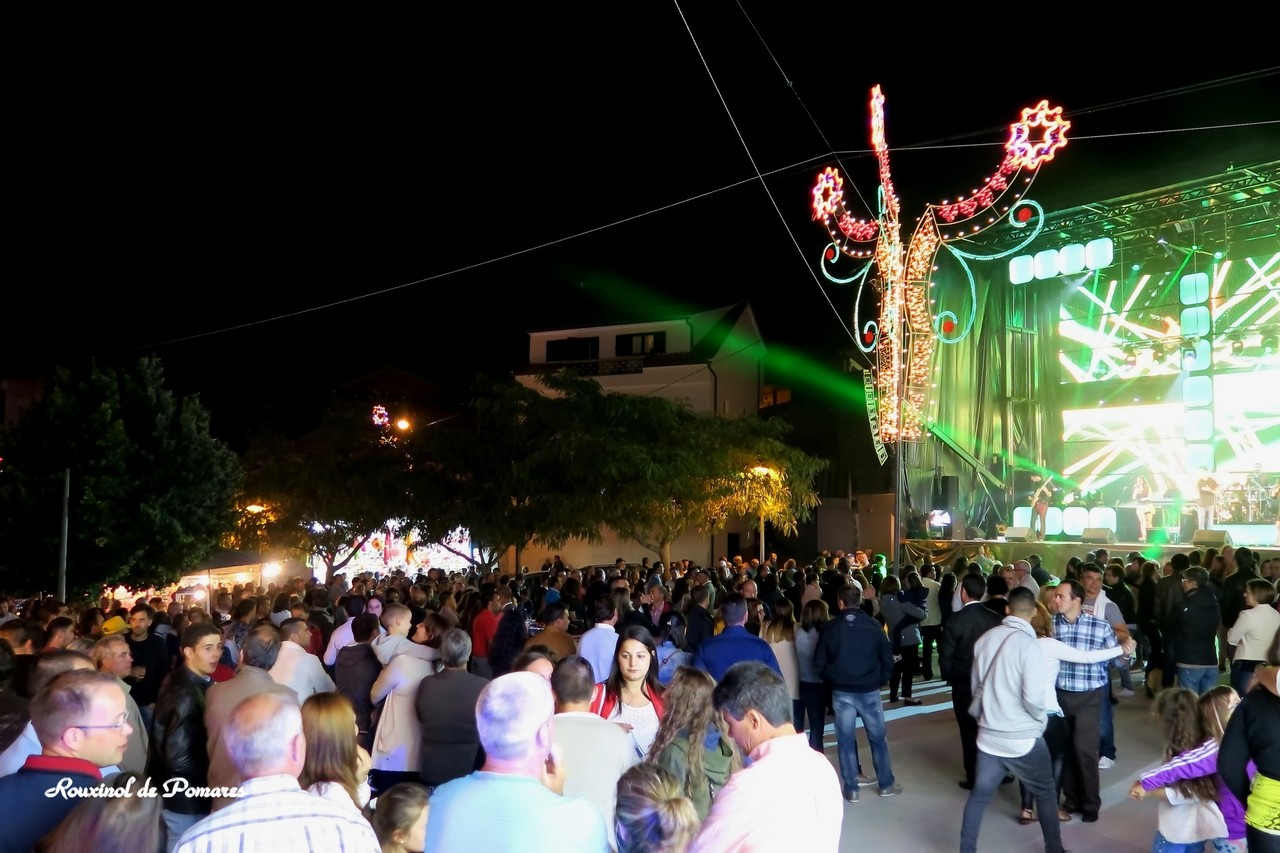 Festas Fiolhoso 2015 (5)