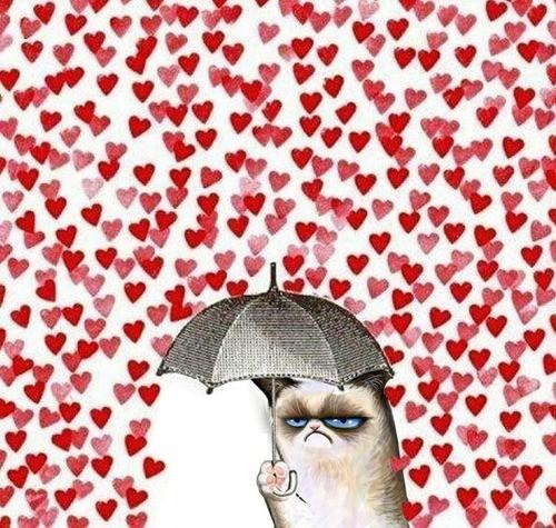 grumpy cat valentines day.jpg