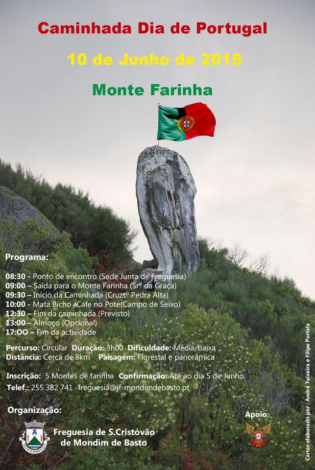 cartaz 2015 (1).jpg