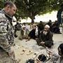 Afghanistan Patrol On Shewan