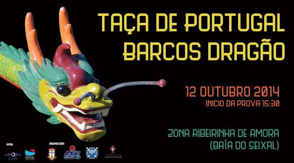 taca-portugal-barcos-dragao2014