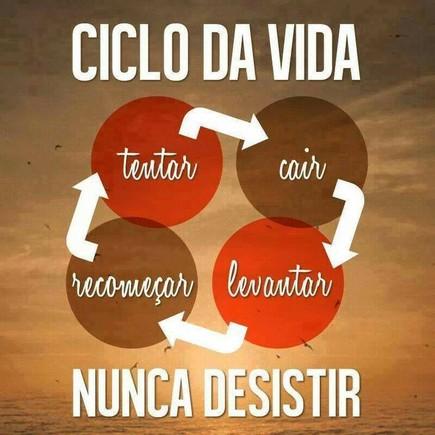 ciclodavida.jpg