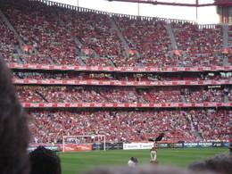 Aguia Vitoria ,Benfica