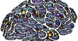brainPIC.jpg