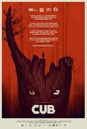 cub-poster1.jpg