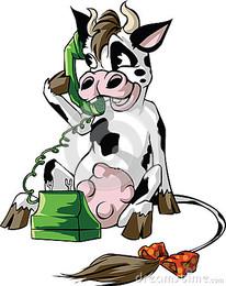 vaca-em-um-telefone-celular-43681966.jpg