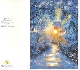 Sol de Inverno. APBP, Artistas Pintores com a Boca e o Pé