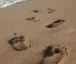 Caminharei.jpg
