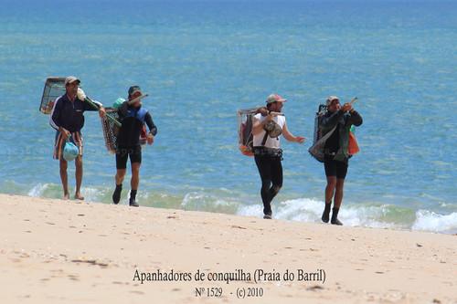 Apanhadores de conquilha, Algarve - (c) 2010