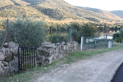 Horta da Vilariça
