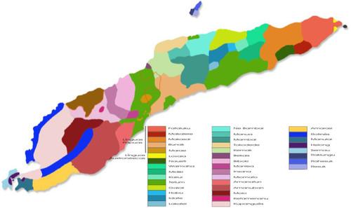 Línguas de Timor