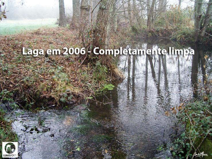 IMGP0427-Blogue.jpg