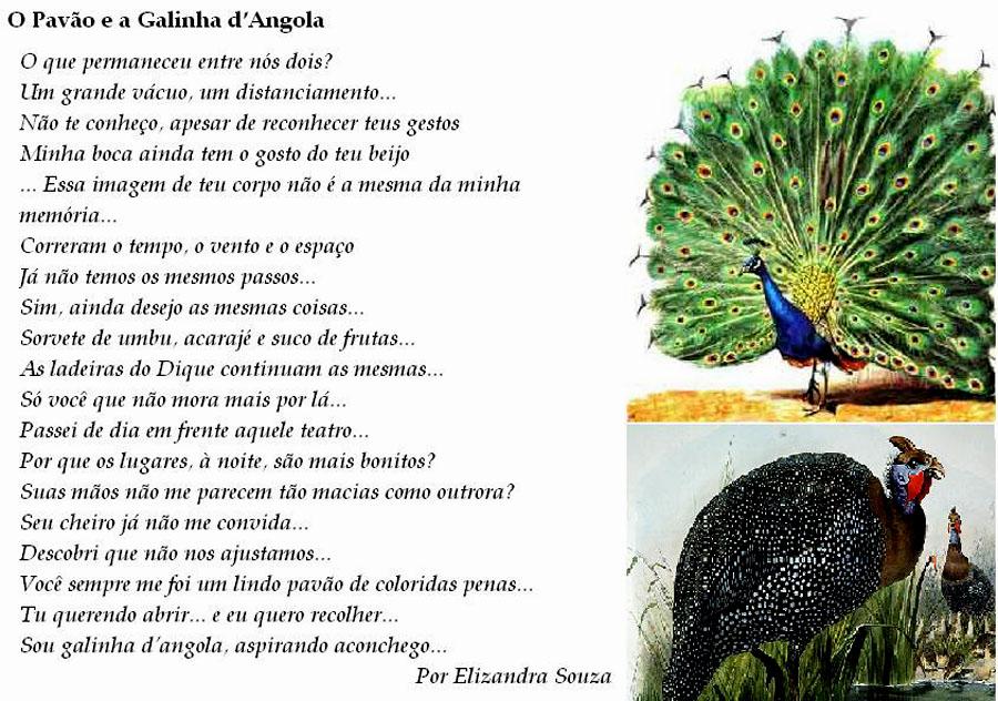 opavao_galinhadangola A.jpg