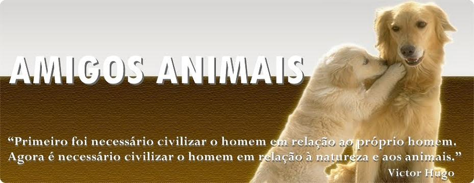 Amigos Animais.jpg