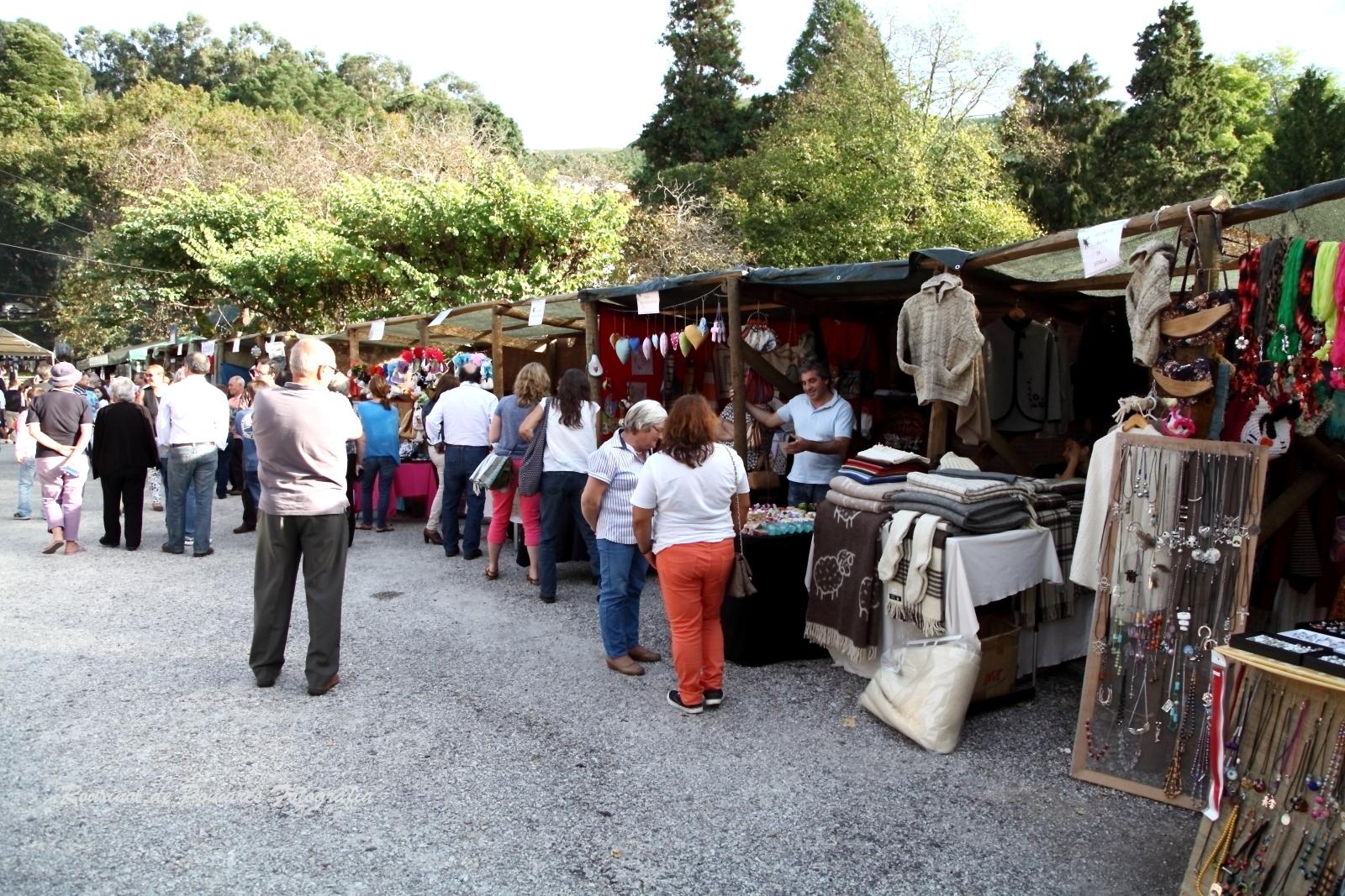 Festa da Castanha Vale de Maceira 2014 (009)