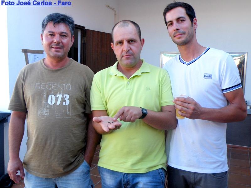 Leilão Castro Verde 030.JPG