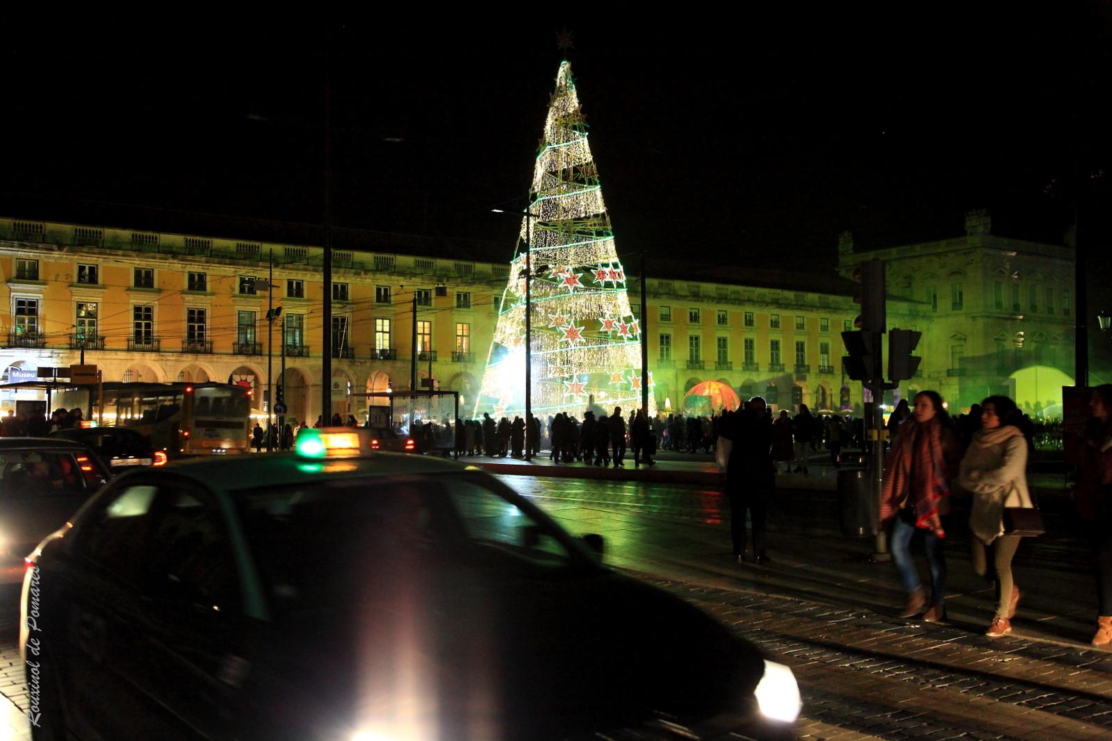 Lisboa Natal 2014 (3)