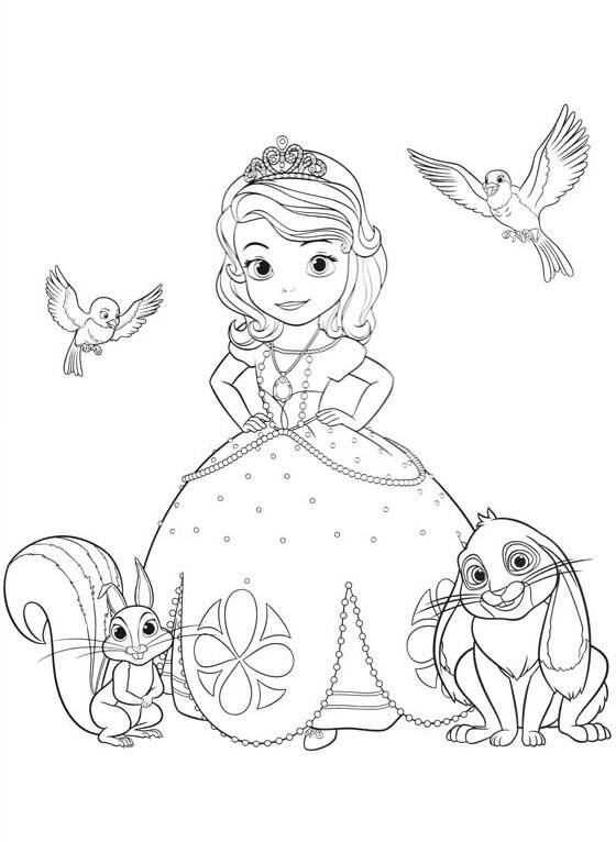 Pinta A Princesa Sofia 3 A Magia Da Disney