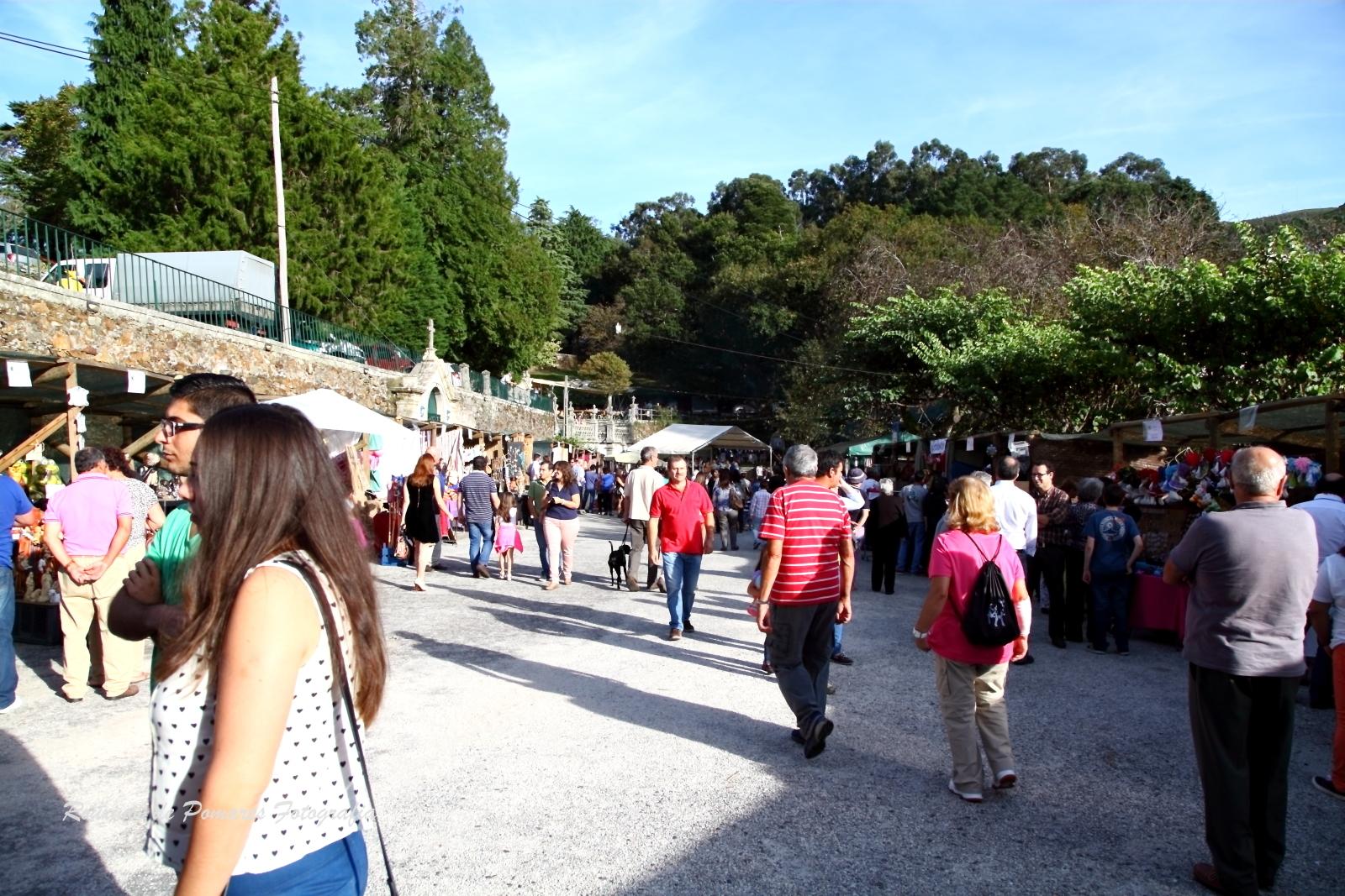 Festa da Castanha Vale de Maceira 2014 (010)