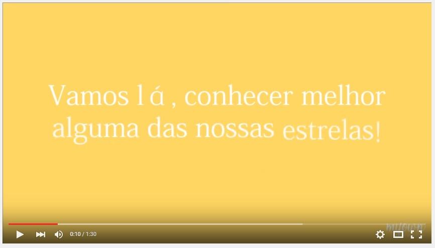 Portugueses trabalham todos nas obras.jpg