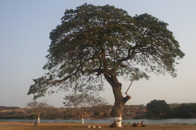 A paisagem à beira rio Kwanza no Dondo. Kwanza Norte. Foto: Mayra Fernandes