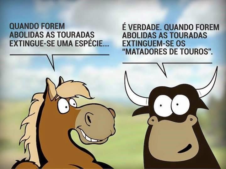 MATADORES.jpg