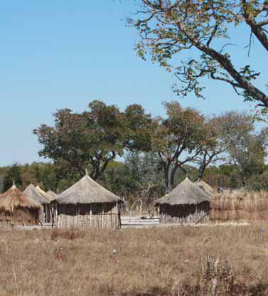 O Projecto Okavango-Zambeze prevê a integração da comunidade Khoisan