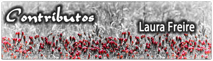 Contributos2014-LauraFreire-740.jpg