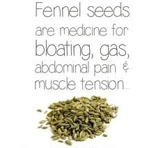 Fennel seeds (18-10-15)