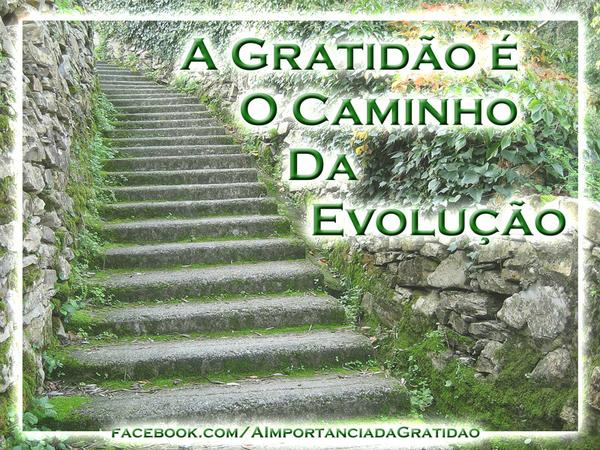 GRATIDÃO.png