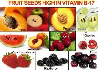 Vitamina B17 (31-10-15)
