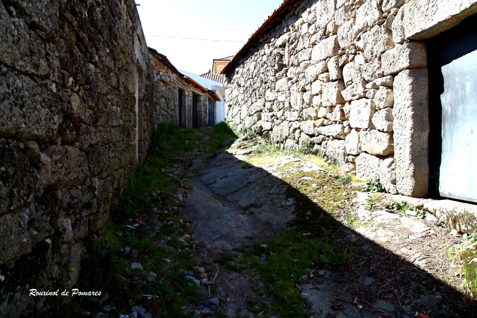 Fiolhoso post 2 (0019)