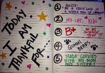 Gratitude journal (29-10-15)