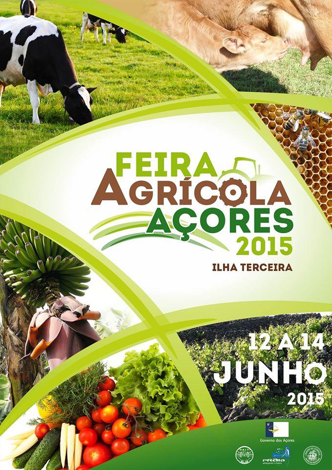 Feira Açores 2015.jpg
