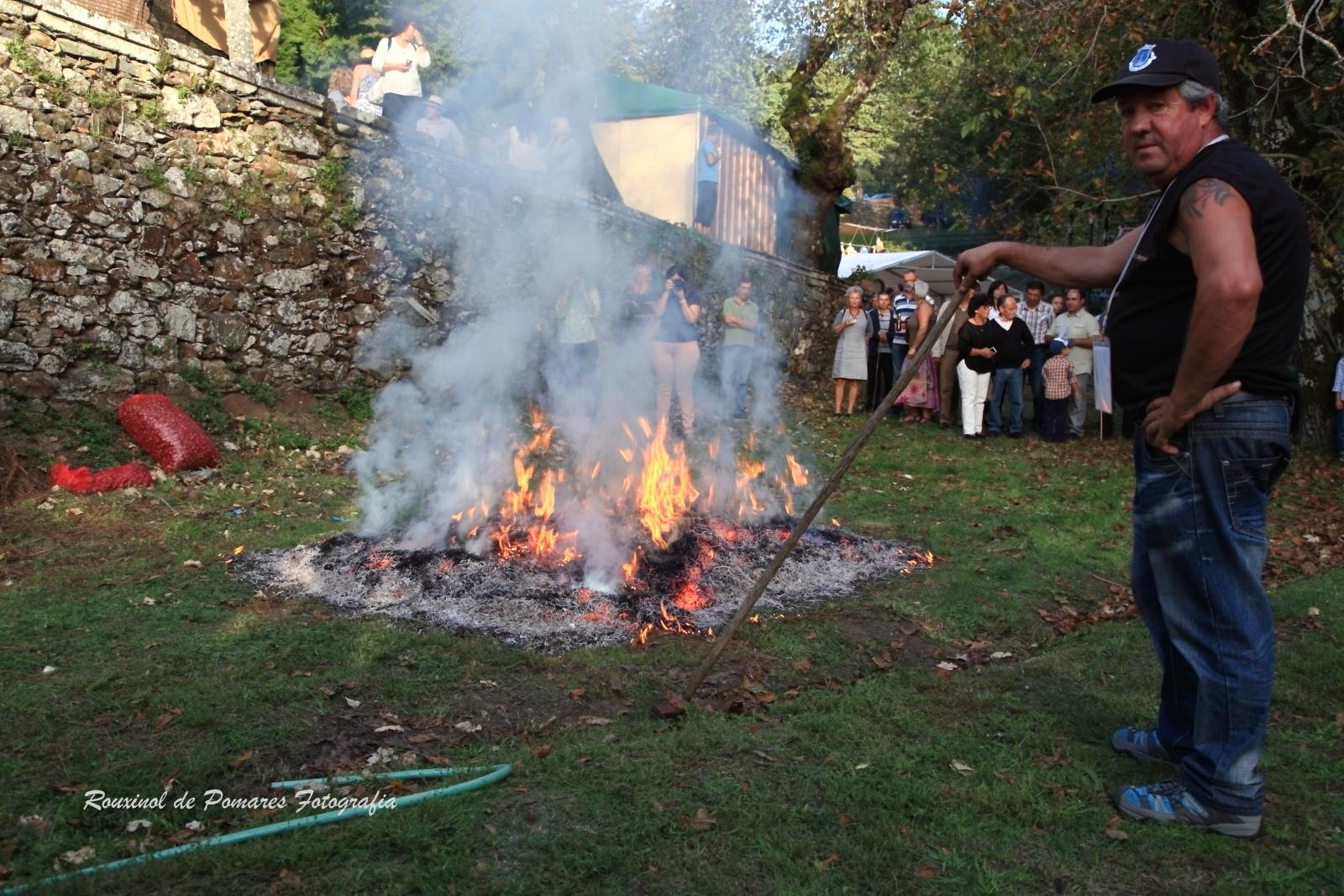 Festa da Castanha Vale de Maceira 2014 (004)