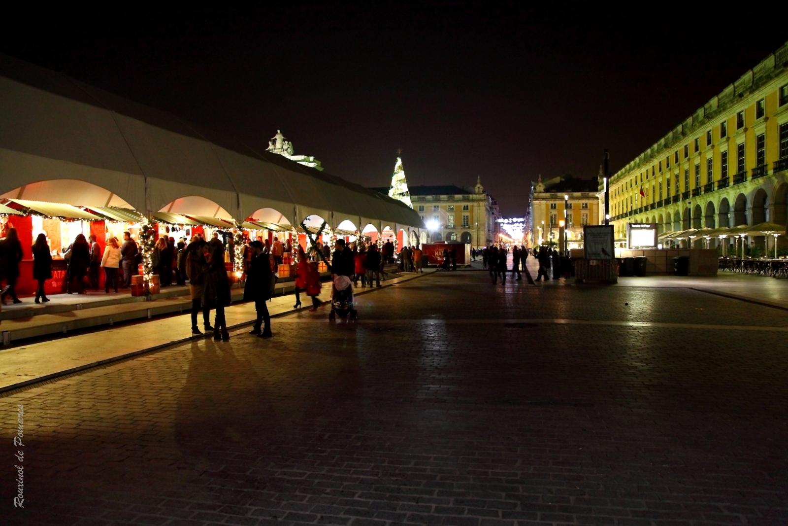 Lisboa Natal 2014 (5)