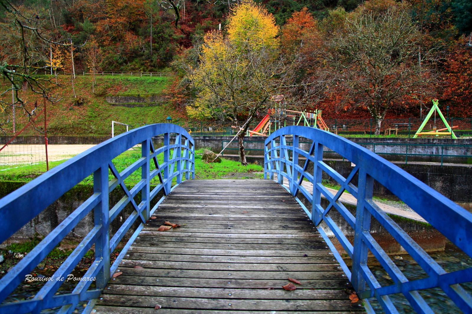 Outono em Pomares I (4)