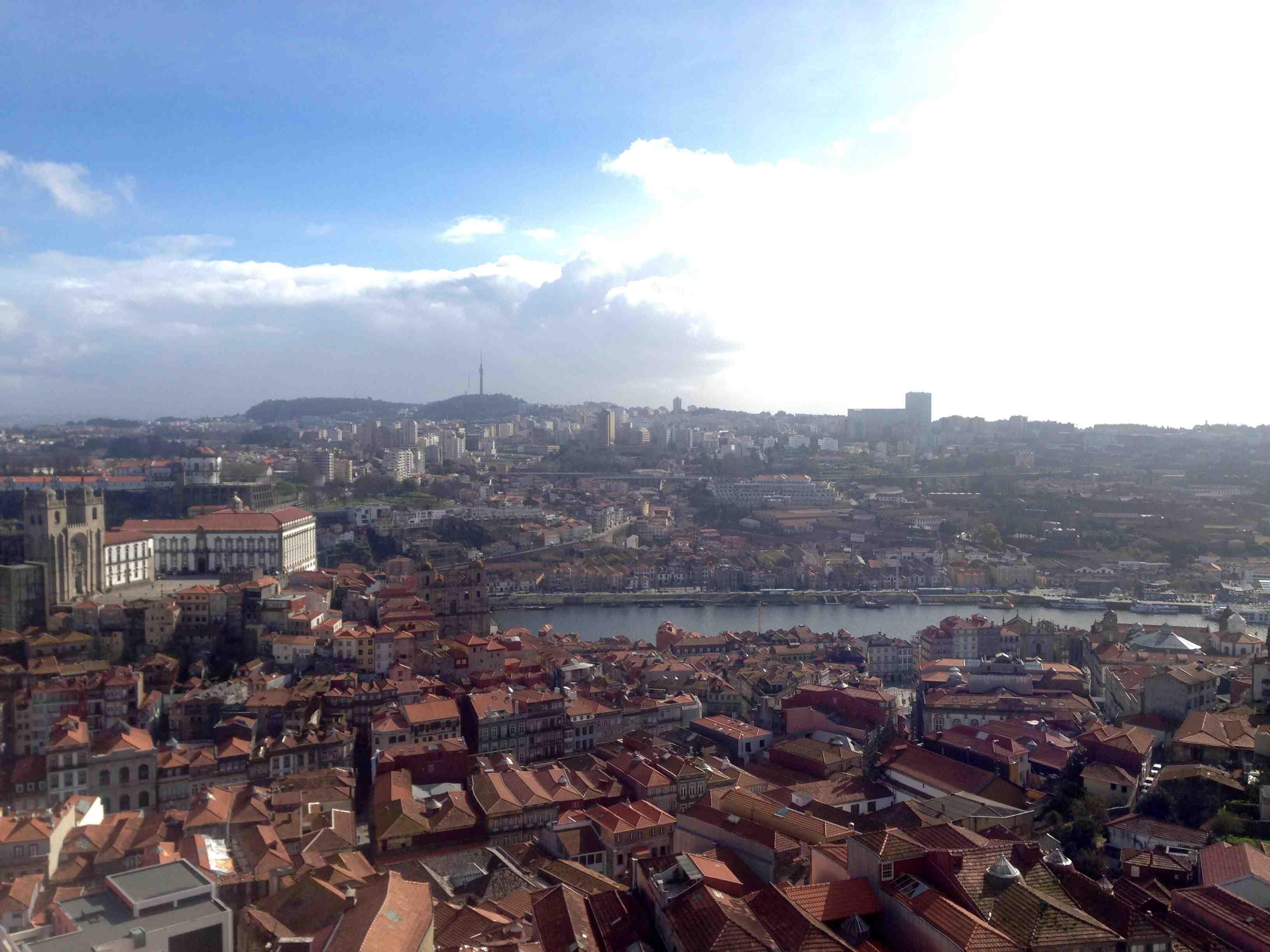 Rio visto da torre.jpg