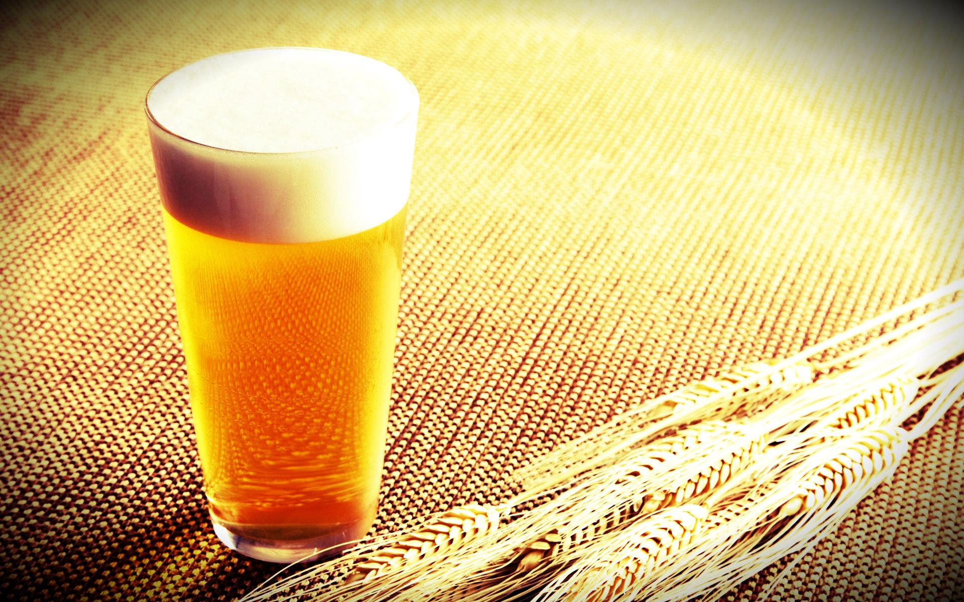 dia_da_cerveja_-_reproducao.jpg