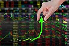 Trader novato Forex