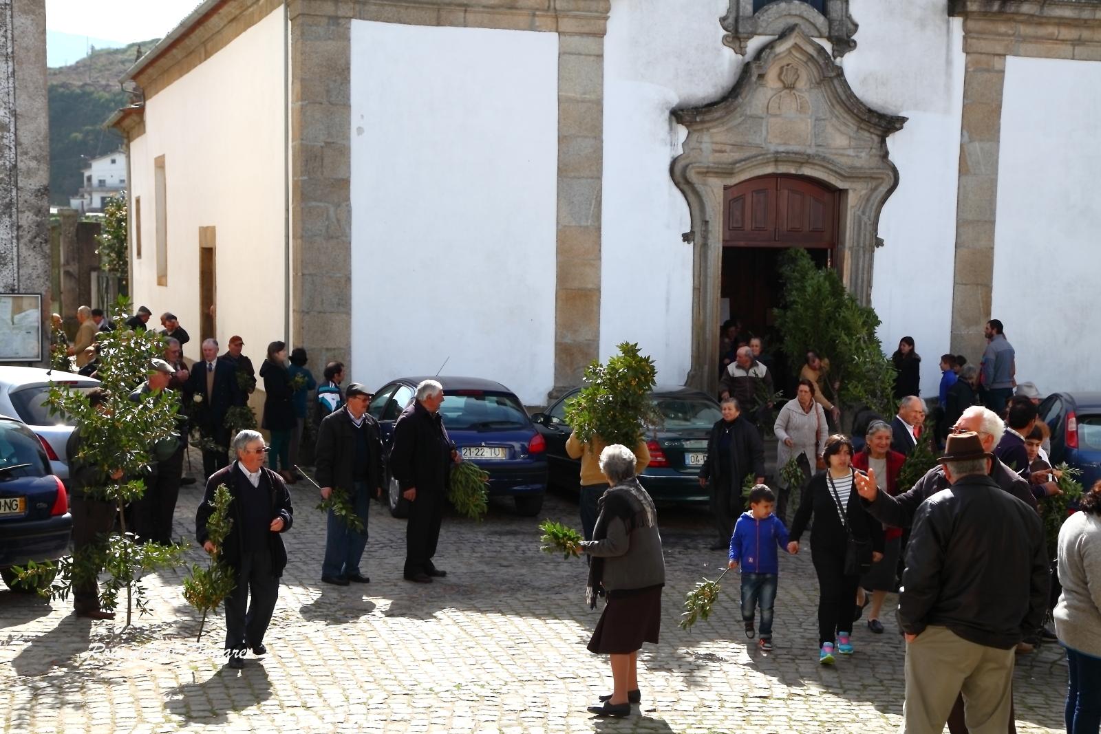 Domingo de Ramos 2015 (3)