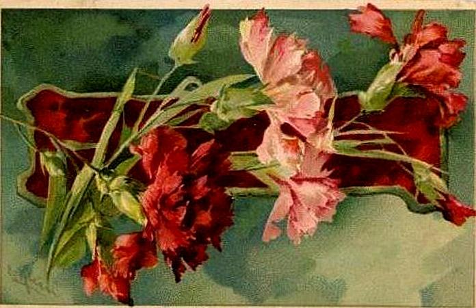 Catherine Klein carnation .jpg