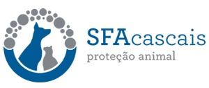 logo_optim2.jpg