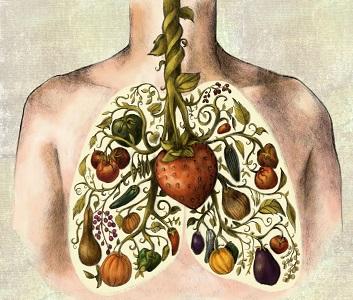 Cancro do pulmão (04-10-15)