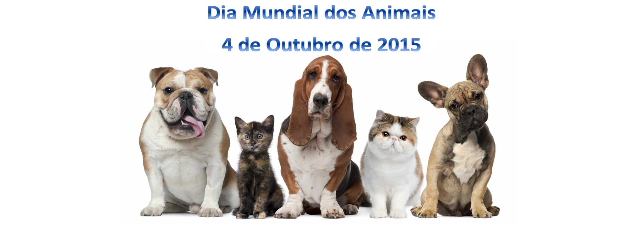 Dia do Animal.png