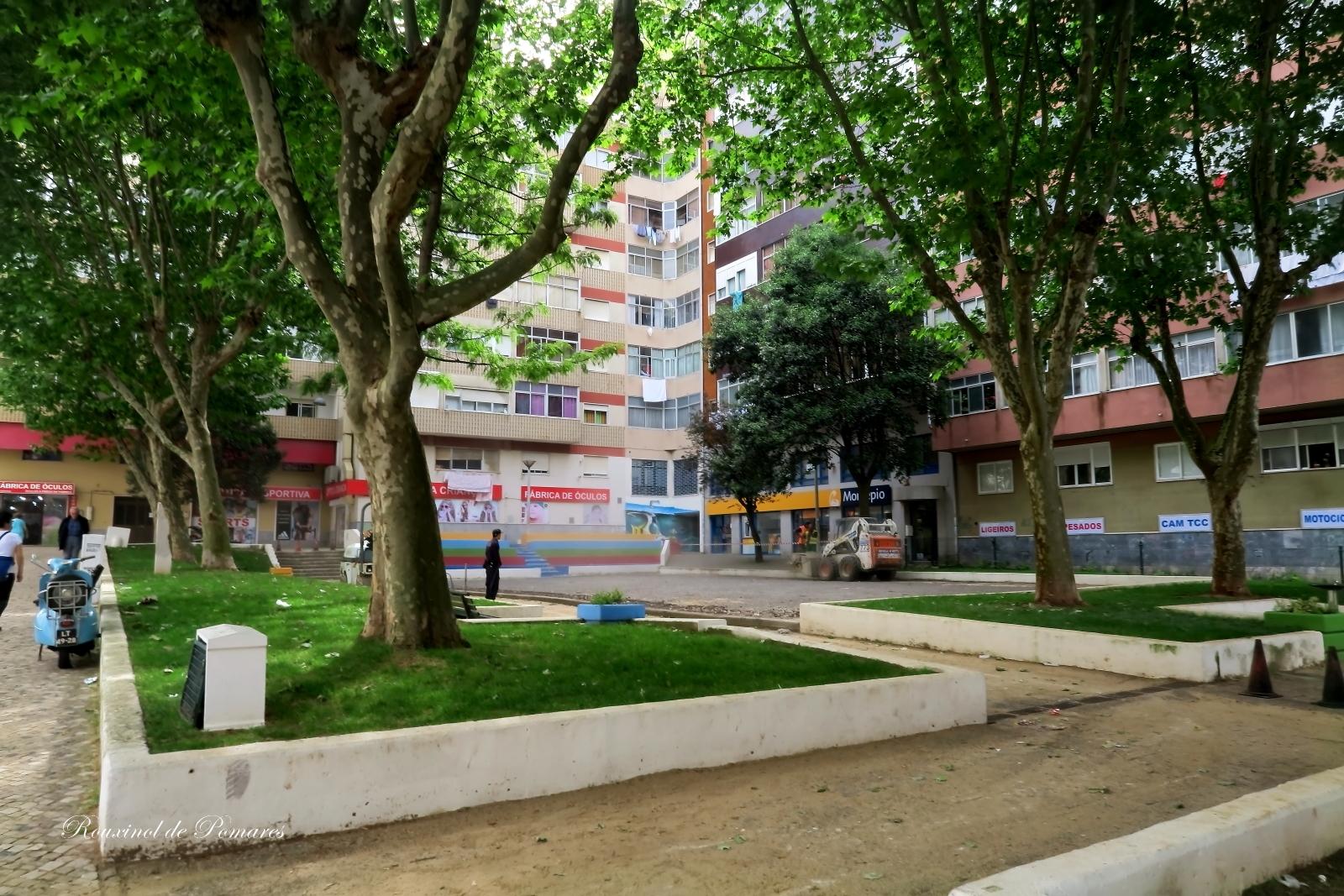 A minha cidade II Agualva - Cacém (6)